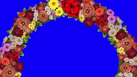 luto : Animation of a rotating ring of flowers on a blue background. Chroma key. Loop video