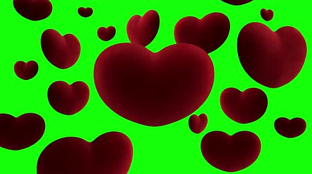 Red velvet hearts hang in the air around one large heart on a green background. Video loop
