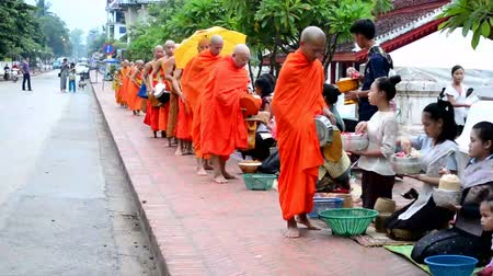 prabang : LUANG PRABANG, LAOS -AUGUST 12, 2014 : people give rice to monks as gift and get their blessing in their everyday morning religious ceremony Stock Footage