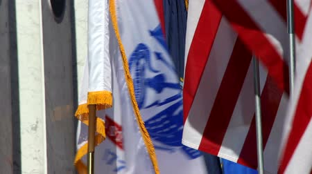 veterano : American and All Military Branch Flags Waiving Stock Footage
