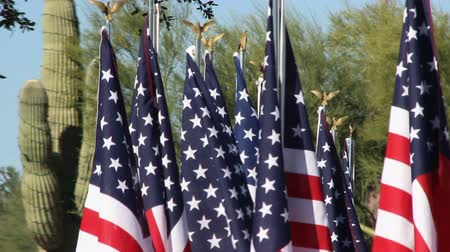 veterano : American Flags waiving in desert landscape