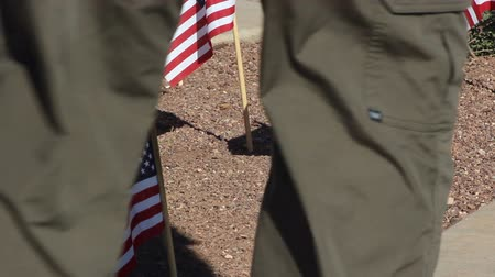 veterano : Veteran walking by small American Flags