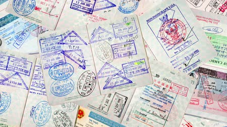 pas : Passport Travel Stamps