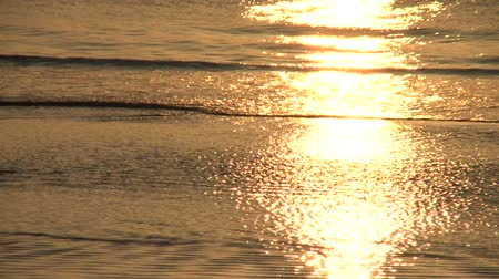 atlantický : The morning sun creates golden reflections on gently rolling waves on the shore of the beach in Jekyll Island, Georgia.