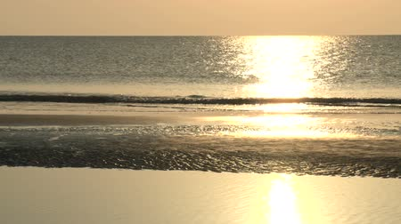 tava : A gentle pan across the shore of the beach, as the morning sun creates golden reflections on gently rolling waves in Jekyll Island, Georgia. Stok Video