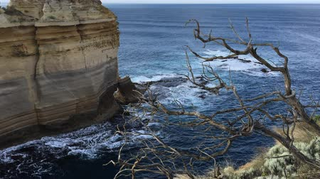 campbell : Razorback viewpoint at Great Ocean Road