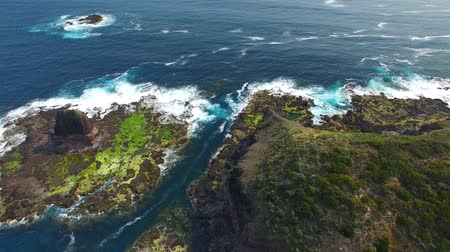 prominent : Aerial view of Cape Schanck, Mornington Peninsula, Australia Stock Footage