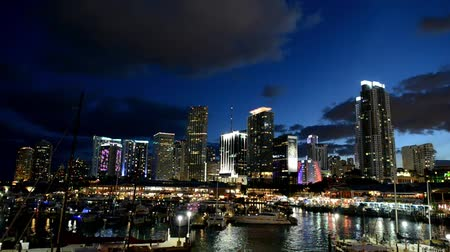 Miami skyline at night Stock mozgókép