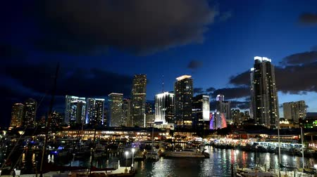 Miami night skyline time lapse Stok Video
