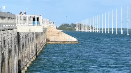 Bridge of Keys Islands, Florida Stok Video