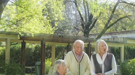 Two retired couples with stick walker and outdoor speaking with nurse, light rays coming from behind them