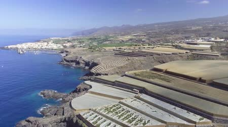 kanarya : Tenerife. Aerial view of countryside with banana cultivation