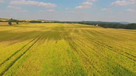 земледелие : Countryside meadows, aerial view