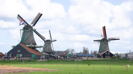 голландский : Windmills of Netherlands