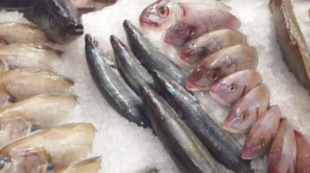 jíst : display of many fresh fish of various varieties on a bed of ice in the fishmongers shop