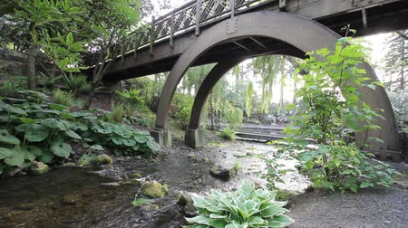 pomost : Water Creek with Plants, Trees and Wood Bridge in Crystal Springs Garden in Portland Oregon 1920x1080