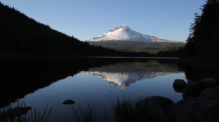 montar : Mount Hood Water Reflection with Trees and Rocks in Trillium Lake Oregon