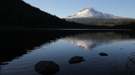 mt : Mount Hood Water Reflection with Trees and Rocks in Trillium Lake Oregon