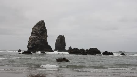 szénaboglya : Cannon Beach Oregon at Low Tide with Waves Closeup 1920x1080