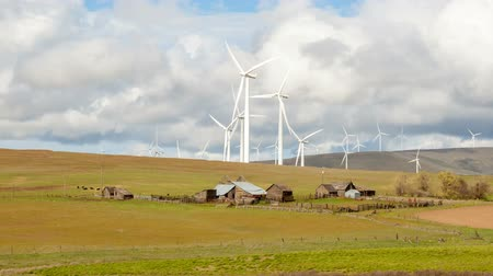 moinho de vento : Wind Turbines on Open Rolling Terrain with Cattle Grazing on Farmland and Ranch Houses in Goldendale Washington Moving White Clouds and Blue Sky Time Lapse 1920x1080 Vídeos