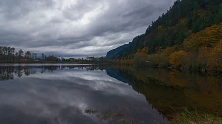 piknik : Time Lapse Movie of Benson Lake with Moving Clouds Fall Colors and Water Reflection on a Stormy Day in Autumn Portland Oregon 1920x1080 Stok Video