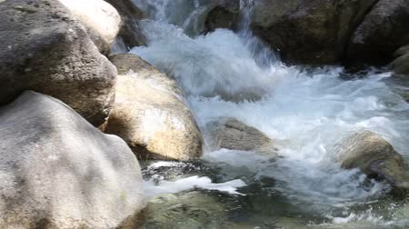 natura : Water Flowing over Rocks and Boulders from Shannon Falls in Vancouver BC Canada Panning Movie 1920x1080 Wideo