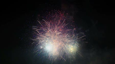 cintilante : High Definition Movie of Colorful Fireworks in Night Sky During a Festive Celebration Event 1920x1080 Stock Footage