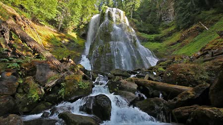 состояние : High Definition Movie with Water Audio Sound of Majestic Falls Creek Falls in Skamania County Washington State in Scenic Pacific Northwest 1920x1080