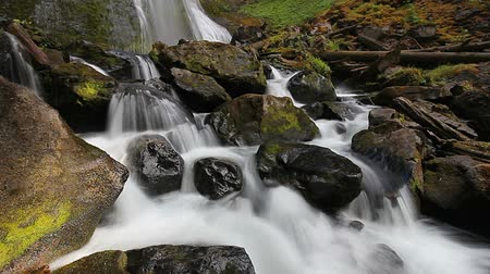 devletler : High Definition Long Exposure Movie with Water Audio Sound of Falls Creek Falls in Skamania County Washington State in Scenic Pacific Northwest 1920x1080 Stok Video