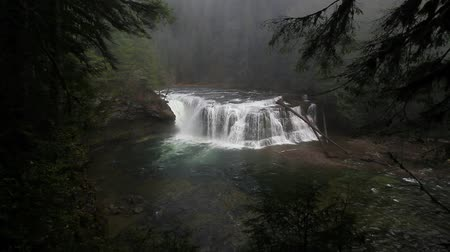 High definition movie of spectacular Lower Lewis River Falls in Washington state 1080p hd