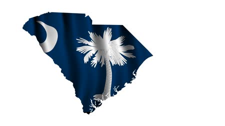 sud : South Carolina Flag Animated Filmati Stock