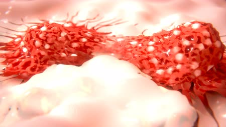 gotículas : Dividing cancer cell Stock Footage