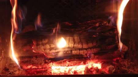 log burning in fire in a fireplace closeup no audio Stok Video