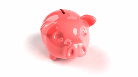 svině : pink piggy bank