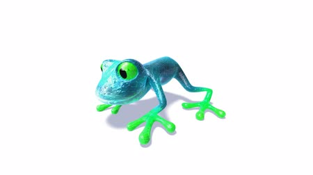žába : blue green frog over white background Dostupné videozáznamy