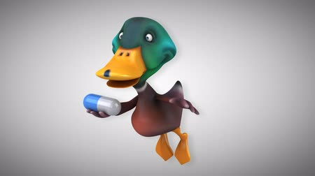 duck : Cartoon flying mallard with capsule pill Stock Footage