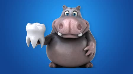 cálcio : Cartoon hippo pointing and holding a tooth