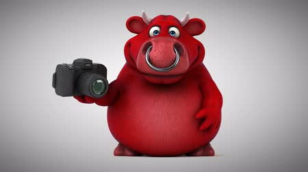 bull ring : Cartoon red bull with camera
