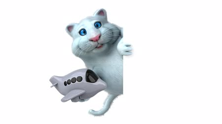 gizli : Cartoon cat holding an airplane and hide Stok Video