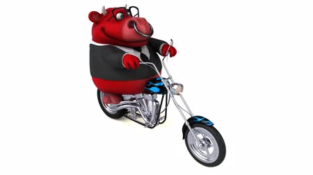 kruvazör : Cartoon cow riding on a chopper bike Stok Video