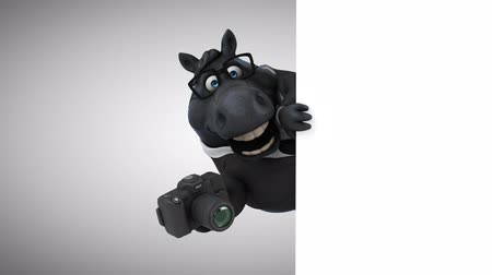 entellektüel : Cartoon horse with spectacles holding a camera Stok Video