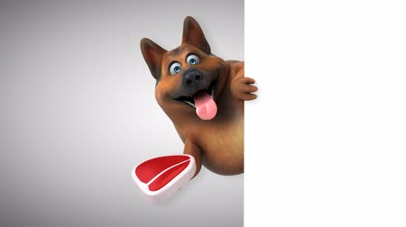 alfa : Cartoon dog with a steak Stock Footage