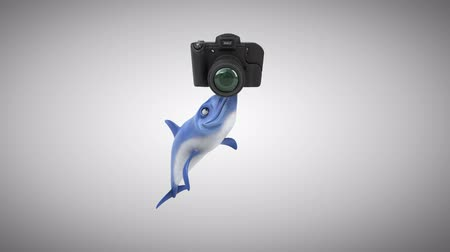 flippers : Cartoon dolphin with a camera