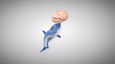 flippers : Cartoon dolphin with a brain