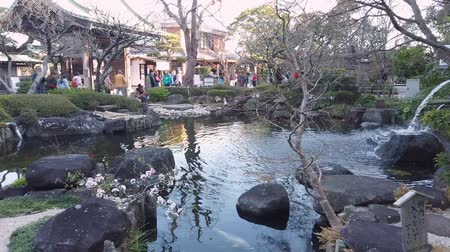 Kamakura, Japan - 21 maart 2019: Mensen bezoeken de The Pond in Hase-Dera, Kamakura. Stockvideo