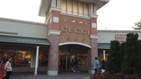 fuji : Tokyo, Japan - 23 March 2019 : Tourists is shopping in Japanese Gotemba Premium Outlet.