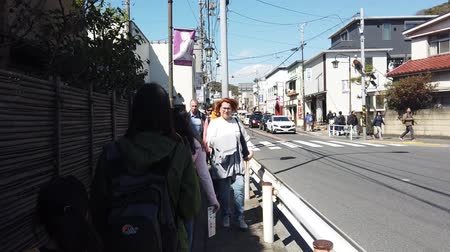 прерыватель : Tokyo, Japan - 23 March 2019 : Tourist are traveling to the Tsurugaoka Hachimangu Shrine, Kamakura.