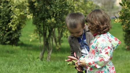 smell : Small girl gives the boy a sprig of a tree and smell the boy kisses her on the cheek