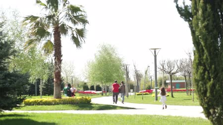 atrás : in spring park with palm trees and other trees walking people with children