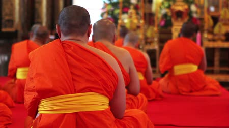 szerzetes : buddhist monks pray in temple